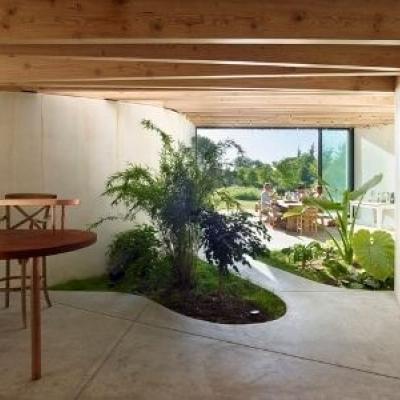 Vườn Treo, Vườn Đứng, Những Lưu Ý Khi Thiết Kế, Mẫu Vườn Treo, Vườn Đứng Đẹp